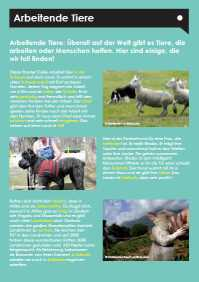 Ezine 3 - German Level 1 – Working Animals – Arbeitende Tiere